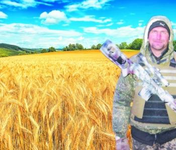 Пам'яті снайпера, залюбленого   в пшеничне  поле